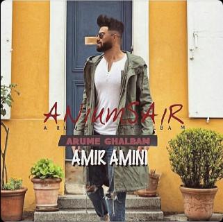 آهنگ Amir Amini به نام Arume Ghalbam