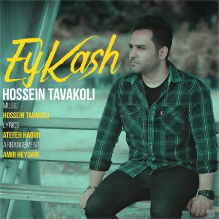 آهنگ-Hossein-Tavakoli-Ey-Kash