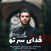 آهنگ Mohammad-Zand-Vakili-Fadaye-Sare-To