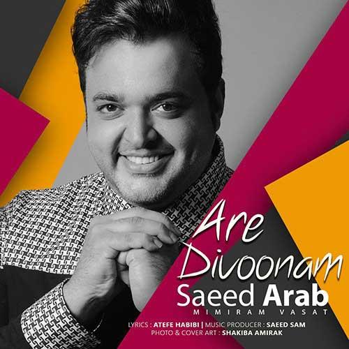 آره دیوونم با صدای سعید عرب
