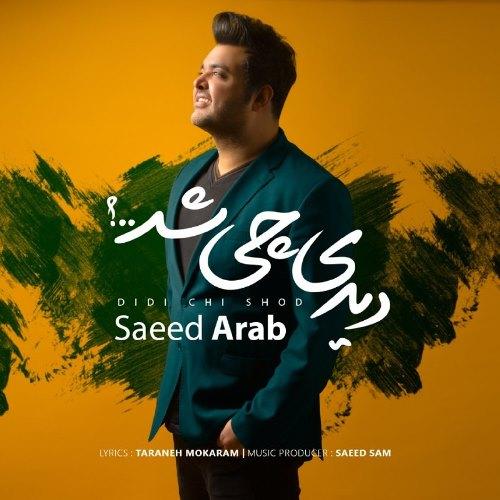 دیدی چی شد با صدای سعید عرب