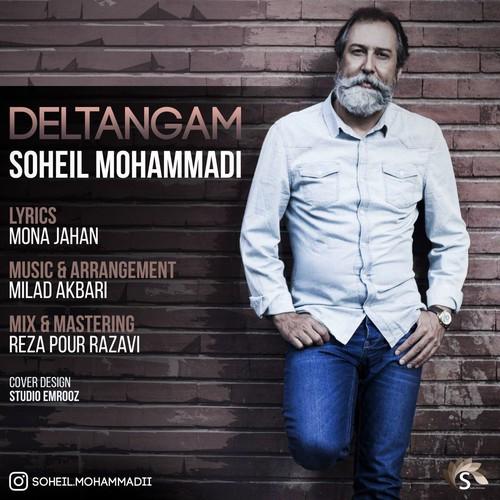 دلتنگم با صدای سهیل محمدی